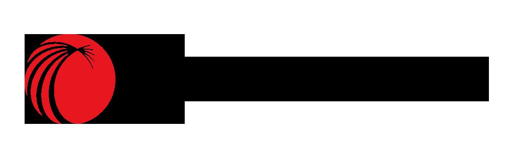 横版红黑logo